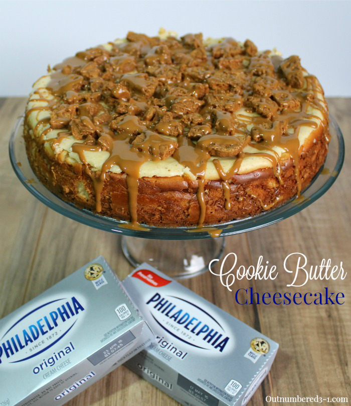 Cookie Butter Cheesecake 2