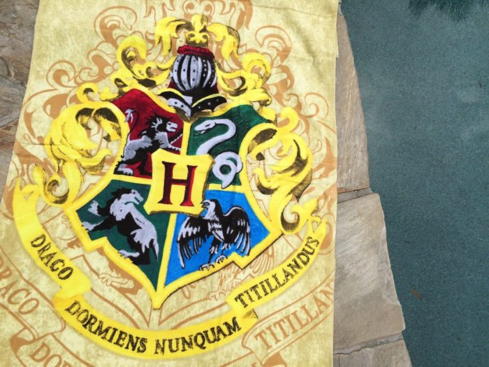 Awesome Harry Potter Beach Towel