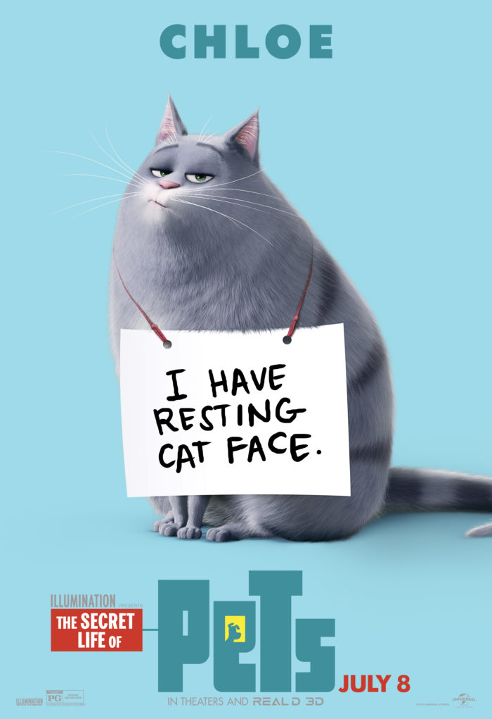 The Secret Life of Pets in Theaters July 8th