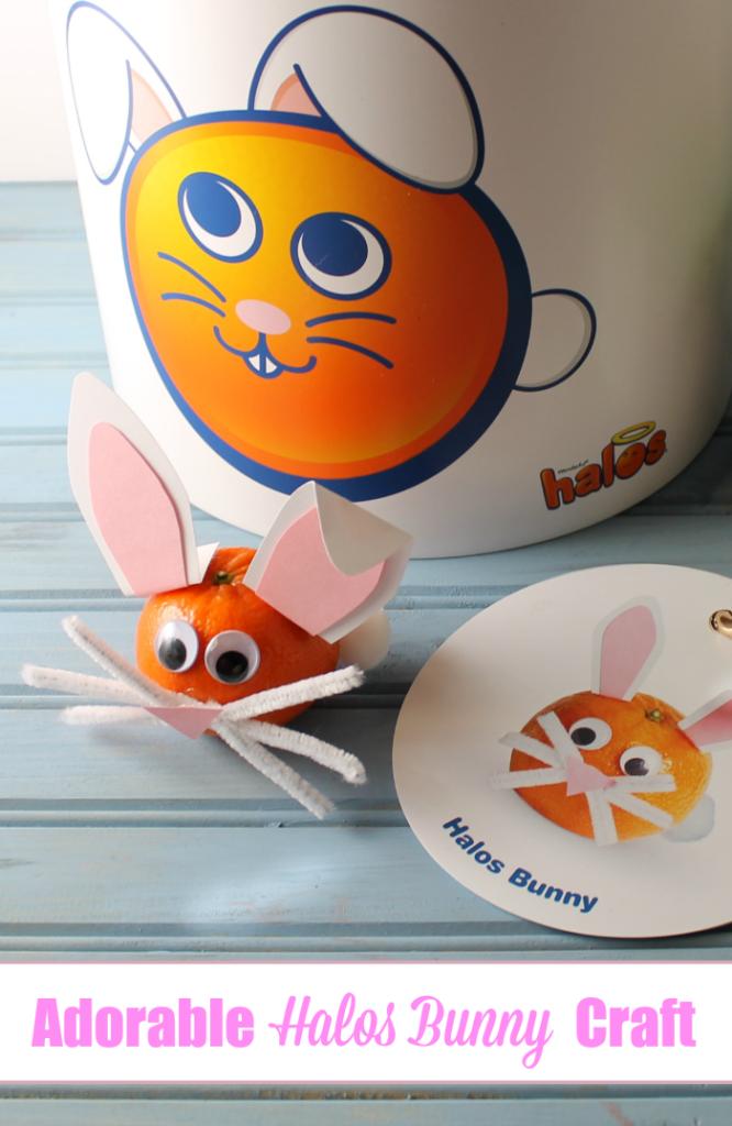Halos Bunny Craft