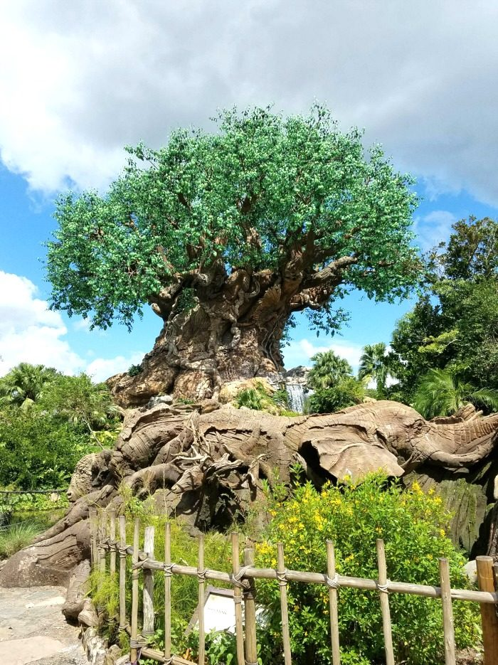 Create Memories and Magic while Taking it Easy at Disney