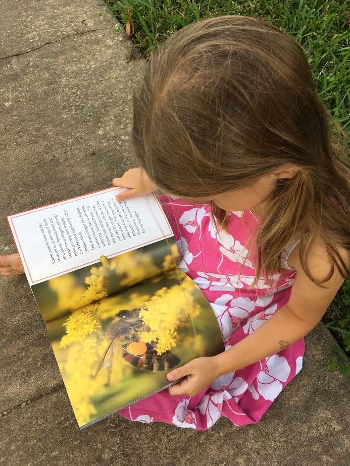 Arbordale's Fall Season of Science & Math Based Children's Books