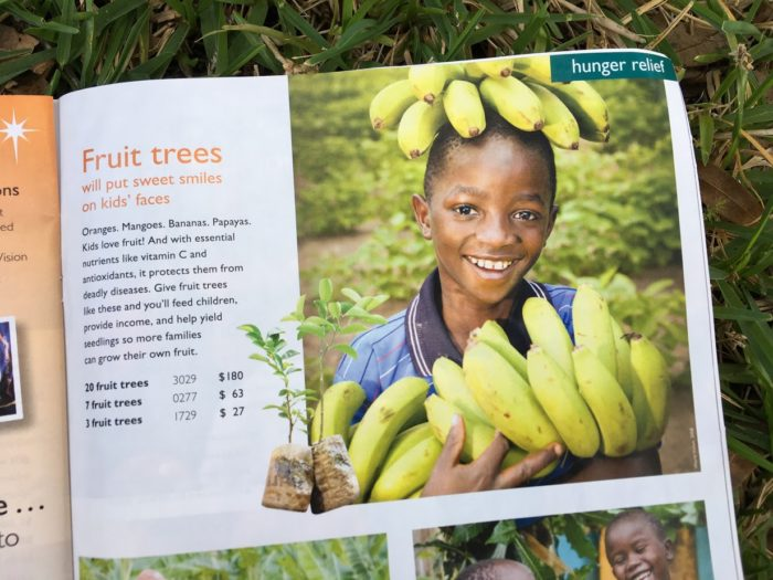 2017 World Vision Gift Catalog + Giveaway ($500 Value)