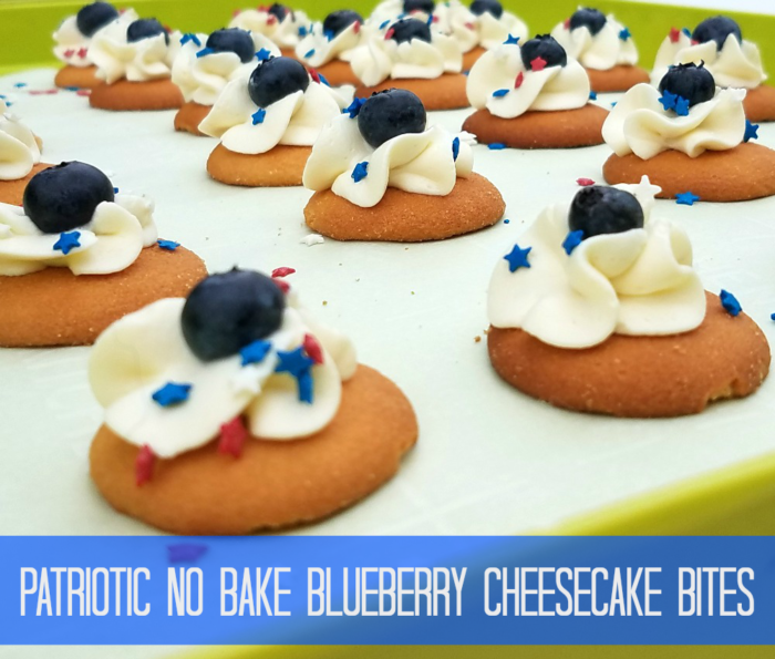 Patriotic No Bake Blueberry Cheesecake Bites