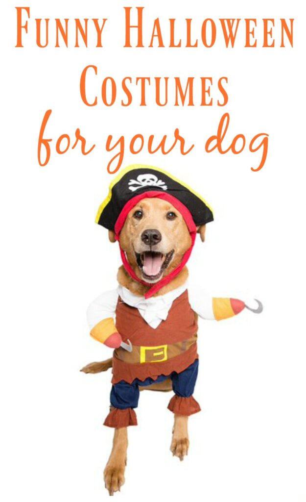 Funny Dog Halloween Costumes