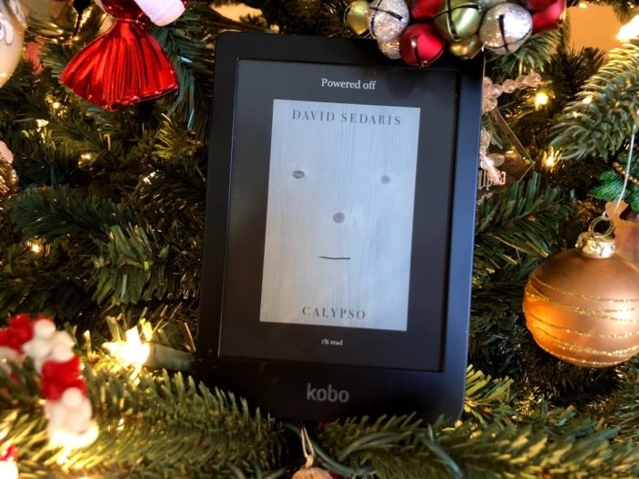 The Kobo Clara HD eReader is What Both Kids and Adults Will LOVE!