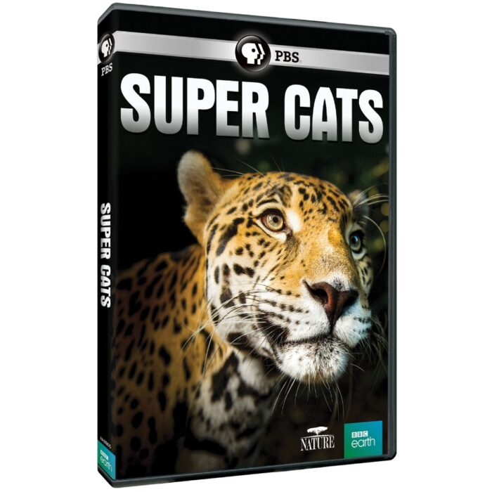 PBS Distribution Releasing Nature: Super Cats on DVD & Digital