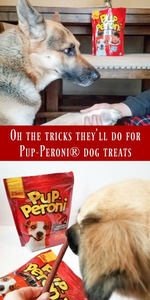 Doing Tricks for Pup-Peroni? Treats