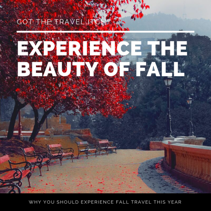 Why You Should Experience Autumn Travel
