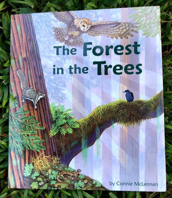 NEW Nature Books From Arbordale Publishing